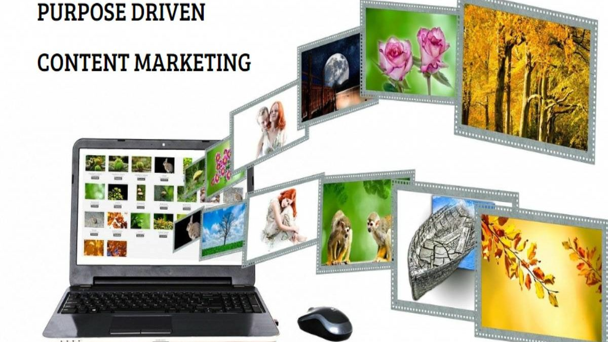What is Purpose-driven Content Marketing? – Definition, Benefits, Organizes