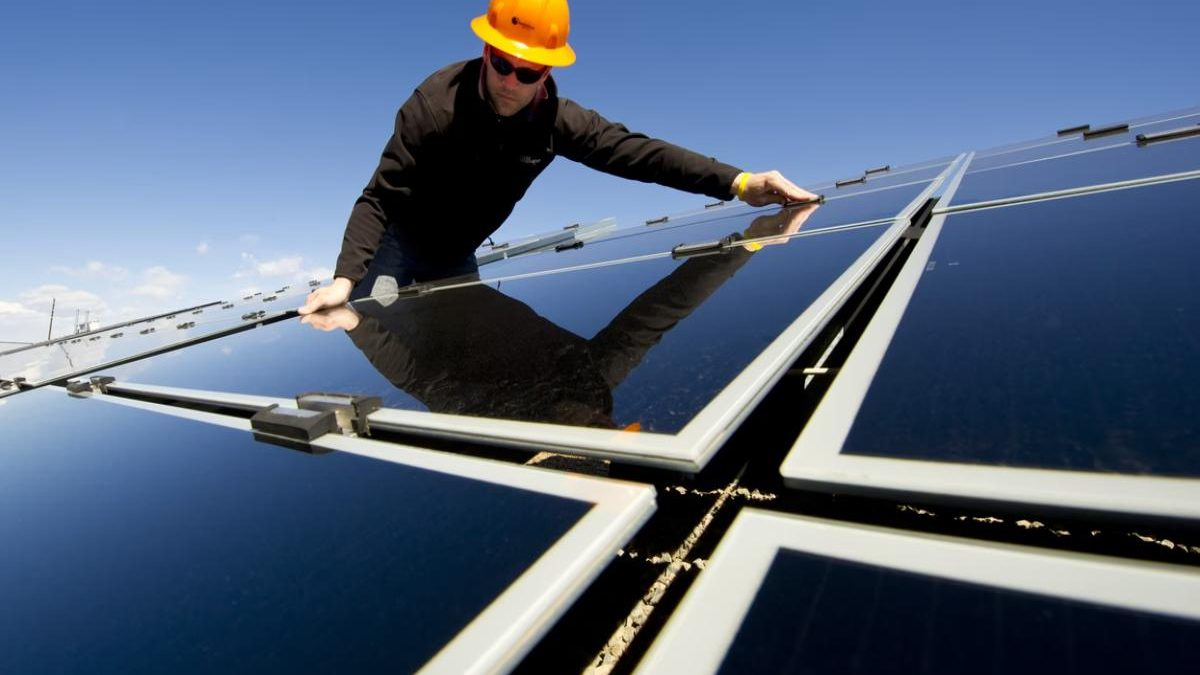 Are Solar Panels Pet Clinic Friendly?